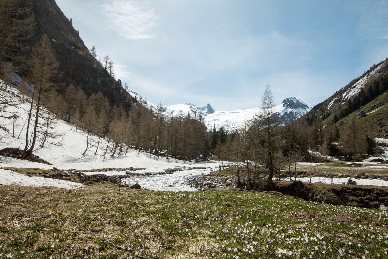 Frühlingswanderung nach Innergschlöss