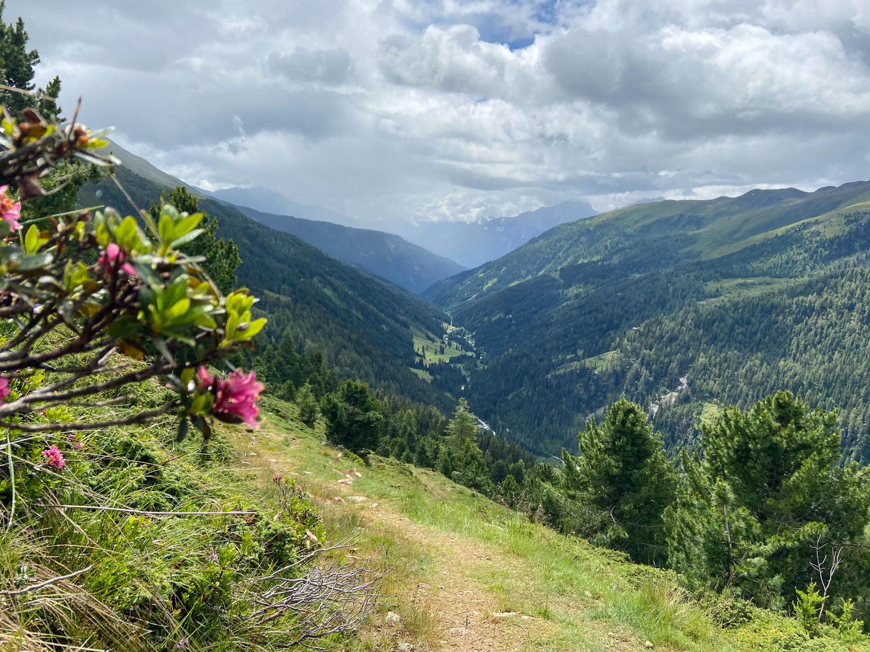 Blick auf das Debanttal, Wanderweg 939 Richtung Wangenitzseehütte