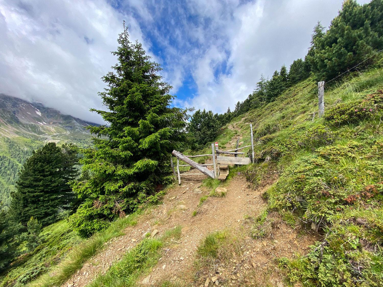 Wanderweg 939 Richtung Wangenitzseehütte